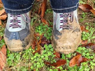 mud-1332495_960_720